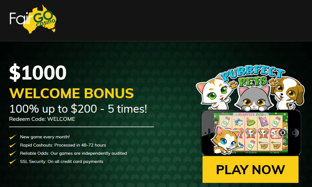 no deposit free spins casino