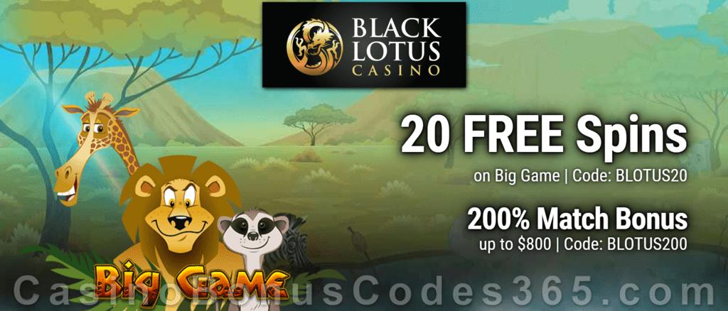Black Lotus Casino 20 FREE Spins on Saucify Big Game plus 200% Match Welcome Bonus Pack